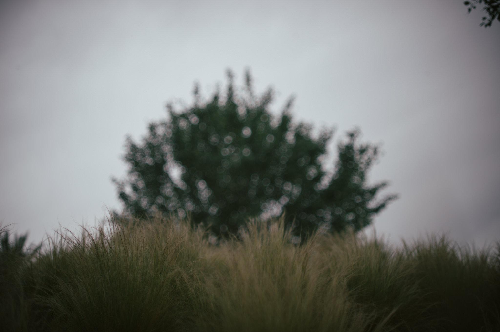 Rainy_Mirador_08
